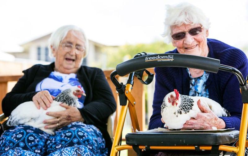 pet therapy con galline per anziani
