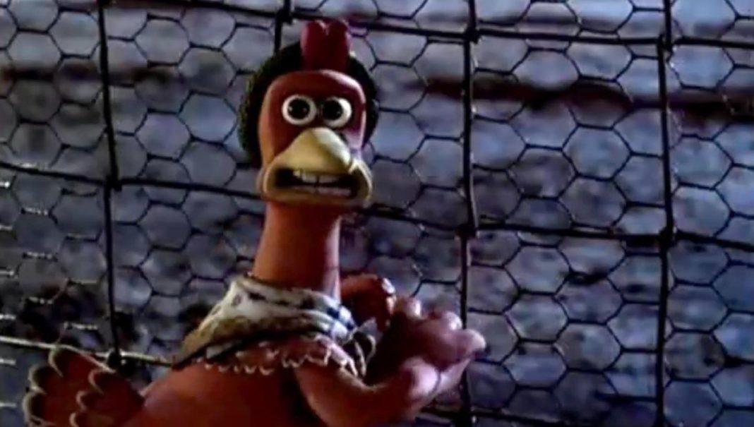 Gaia, la gallina che cerca in tutti i modi di organizzare la fuga dal pollaio.