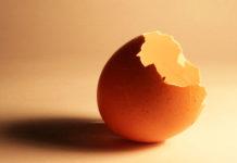 Gusci d'uovo: come riciclarli con 12 utilizzi alternativi e creativi | TuttoSulleGalline.it
