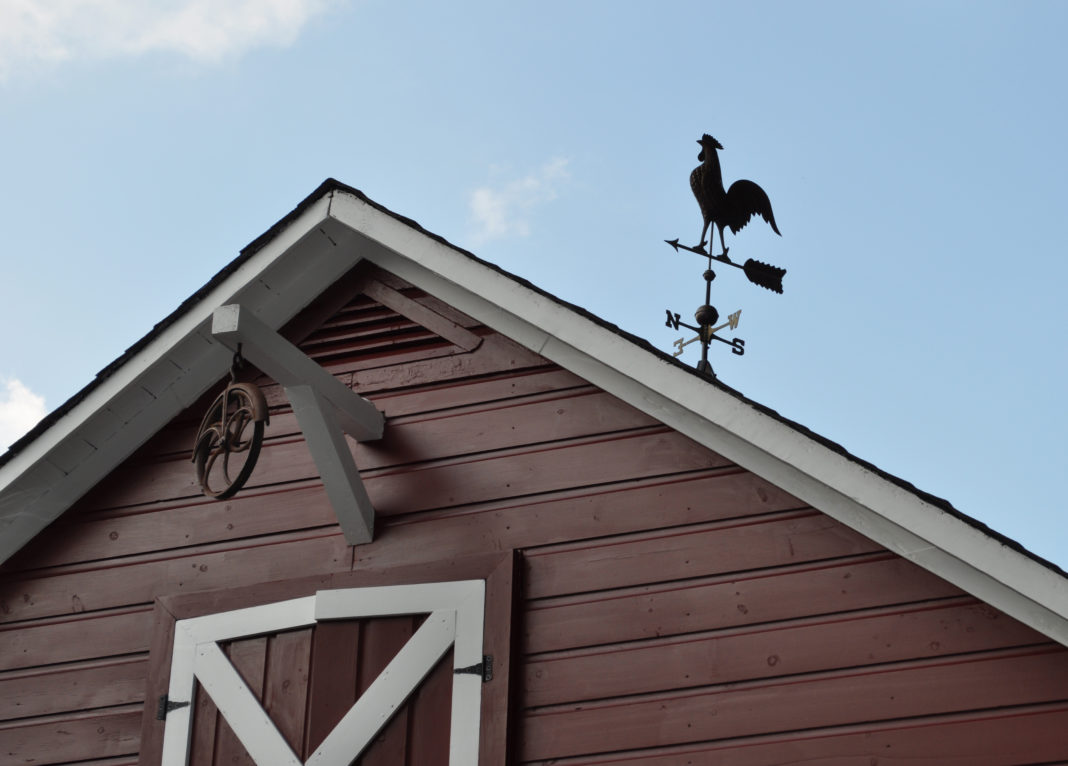 Banderuola segnavento a forma di gallo sul tetto di un granaio