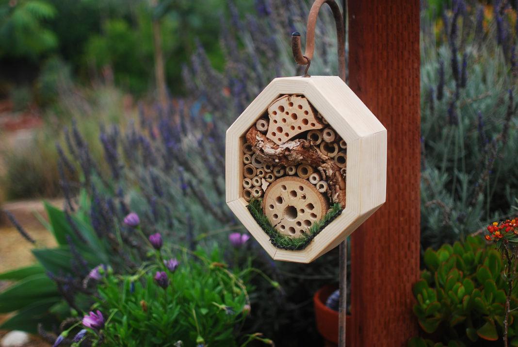 Hotel per insetti in piccolo esagono in legno a forma di alveare