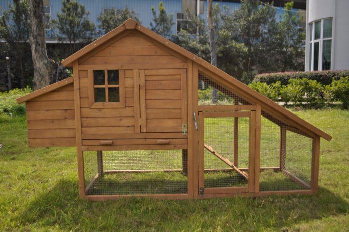 Pollai da giardino in legno per galline ovaiole - Tutto su Galline, Pollaio e...