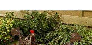 Accessori da giardino e oggettistica da esterno a forma di gallina e gallo   Tuttosullegalline.it