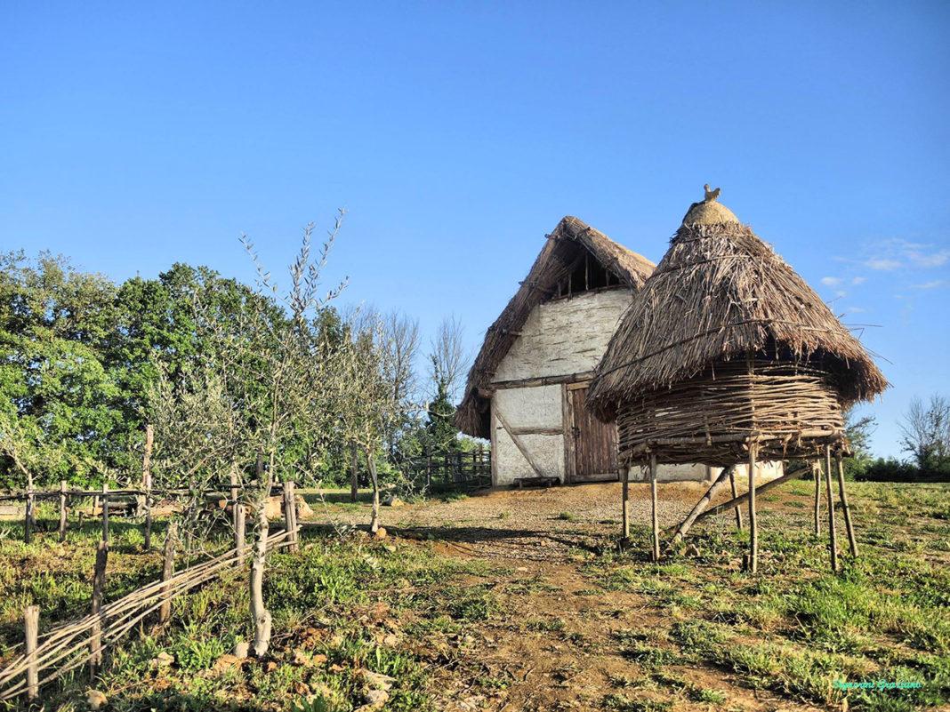 Il pollaio medievale nell'aia di Ermentrude