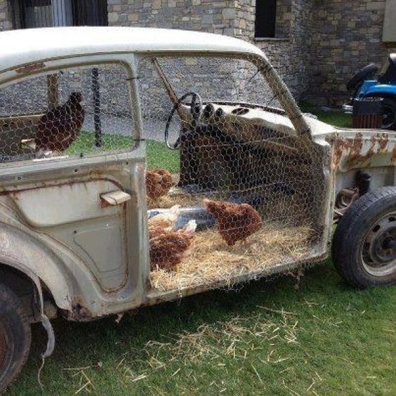 Vecchia auto trasformata in pollaio per galline