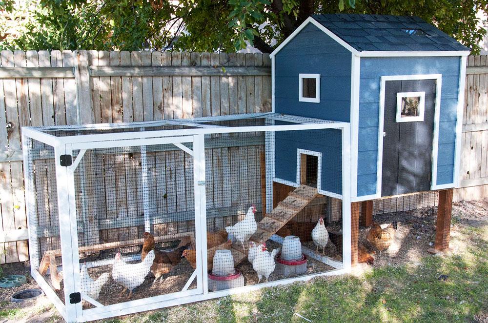 Pollaio fai da te 13 idee originali per la casa delle vostre galline galline pollaio - Percentuale di umidita in casa ...