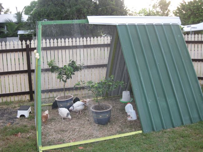 Pollaio fai da te da giardino