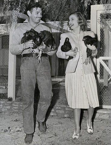 Clark Gable e Carole Lombard con in braccio delle galline