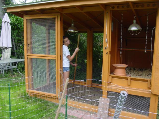 La pulizia del piccolo pollaio da giardino