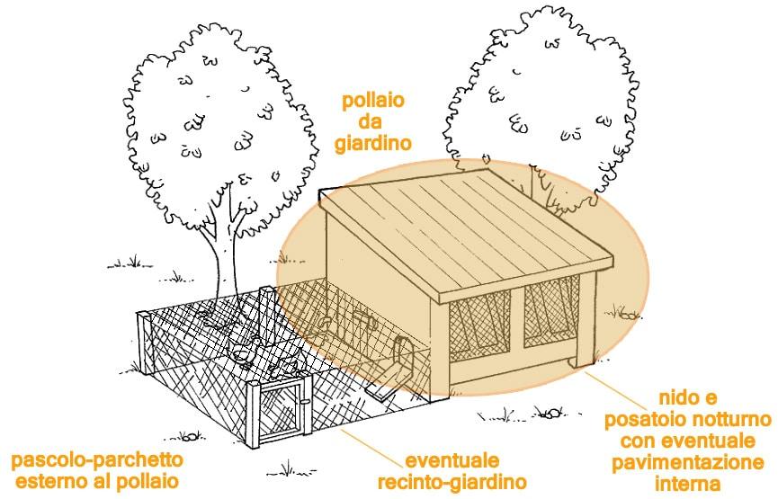 Il posatoio notturno nel pollaio è l'area in cui verranno accumulate le deiezioni notturne