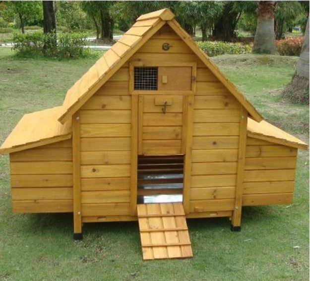 Pollaio in legno fisso Modello Cocincina - IL VERDE MONDO