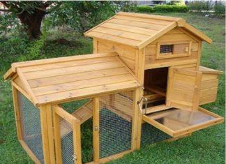 Pollai in legno fissi e mobili IL VERDE MONDO | Tuttosullegalline.it