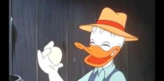 Il pollaio dei personaggi Disney: galline e galli a Topolinia e Paperopoli | Tuttosullegalline.it