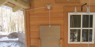 Pollaio con porta crepuscolare | Tuttosullegalline.it