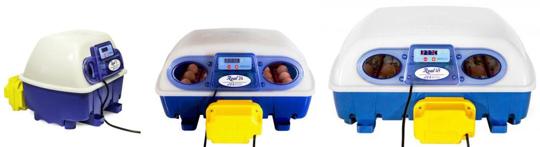 Incubatrici per uova Borotto: REAL12, REAL24, REAL49