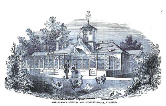 Queen Victoria Poultry House at Winsor
