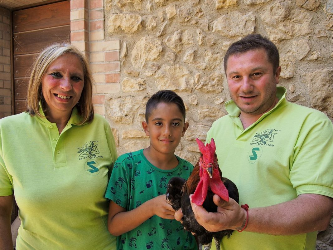 Un esemplare di gallo Cornuto di Caltanissetta (in mano a Giuseppe Cirasa) con lo Staff dell'Associazione TSR