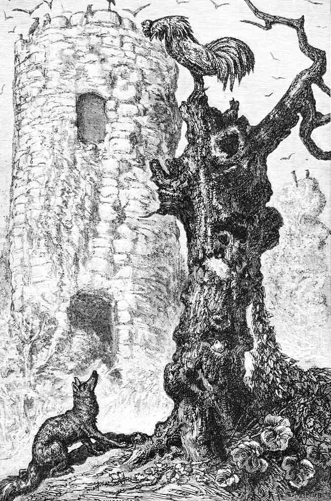 Illustrazione di gallo in cima ad un tronco d'albero che sfugge alla volpe