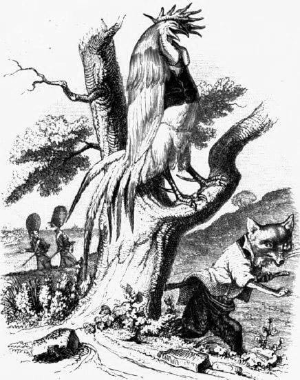 Illustrazione di gallo sul ramo di un albero che si fa beffa della volpe