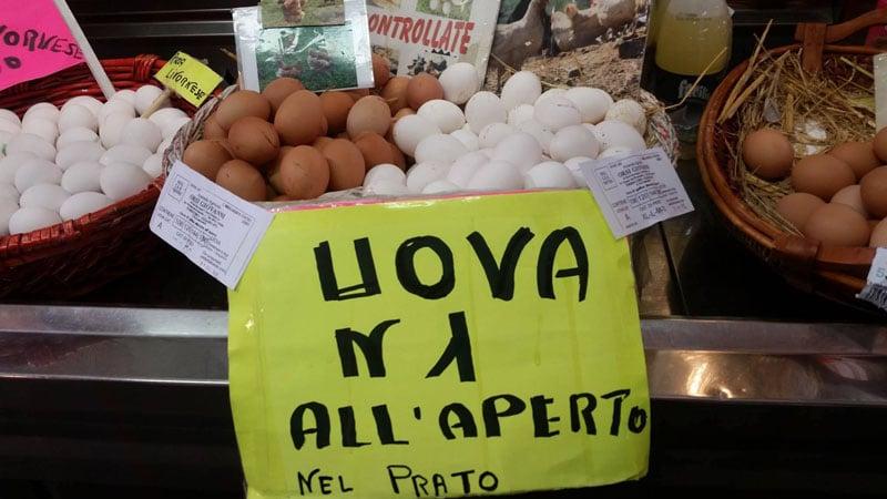 Uova fresche di galline allevate libere all'aperto nel prato