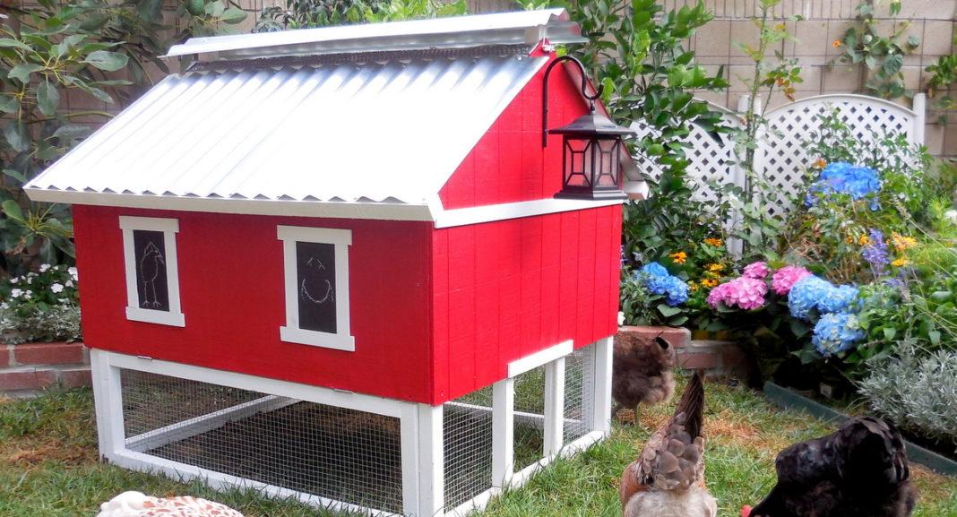 Un pollaio rosso in stile fienile da sogno