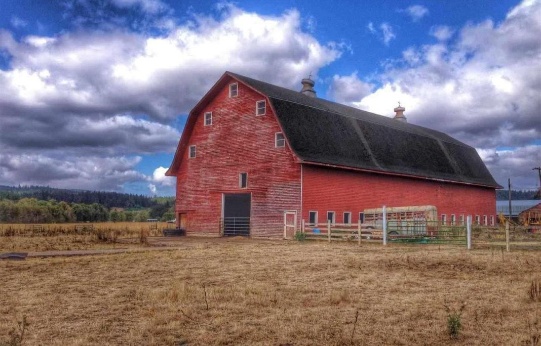 Tradizionale fienile rosso americano (Oregon)