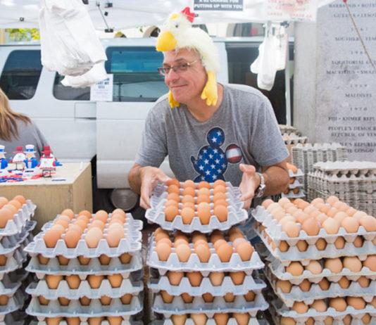 Come diventare piccoli imprenditori agricoli e vendere le uova del proprio pollaio | Tuttosullegalline.it