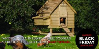 Pollai in legno da giardino a socnto per black friday | Tuttosullegalline.it