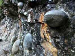 La montagna che depone uova di pietra | Tuttosullegalline.it