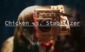 Video divertente di gallina con testa stabilizzata | Tuttosullegalline.it