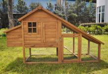 Pollaio in legno da giardino | Tuttosullegalline.it