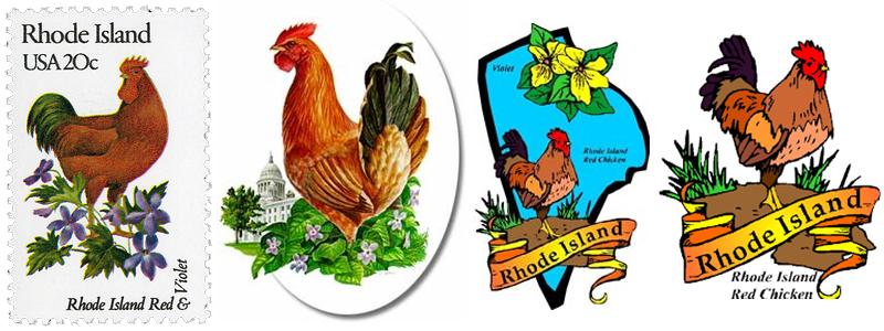 L'immagine simbolo della gallina Rhode Island su francobolli e immagini identità del territorio