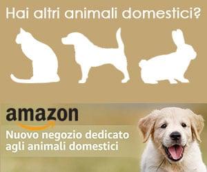 Tutto per i tuoi animali domestici!