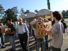 Il progetto Adotta du' galline | TuttoSulleGalline.it