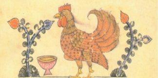 Cervello di gallina - Un libro di Giorgio Vallortigara | TuttoSulleGalline.it