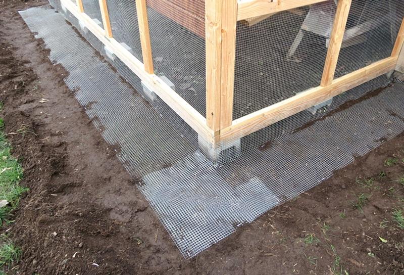 Pollaio con recinzione al suolo