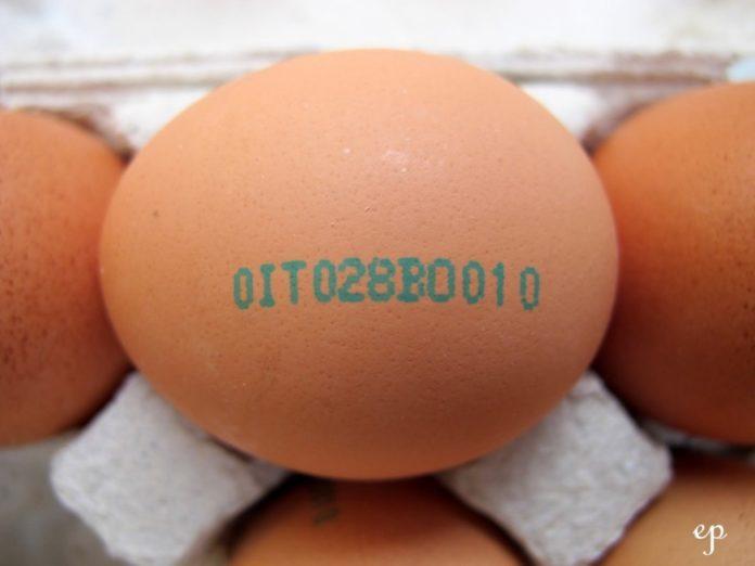 Come leggere l'etichetta delle uova e acquistare le migliori