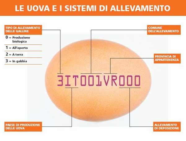 Come leggere i numeri sull'etichetta delle uova