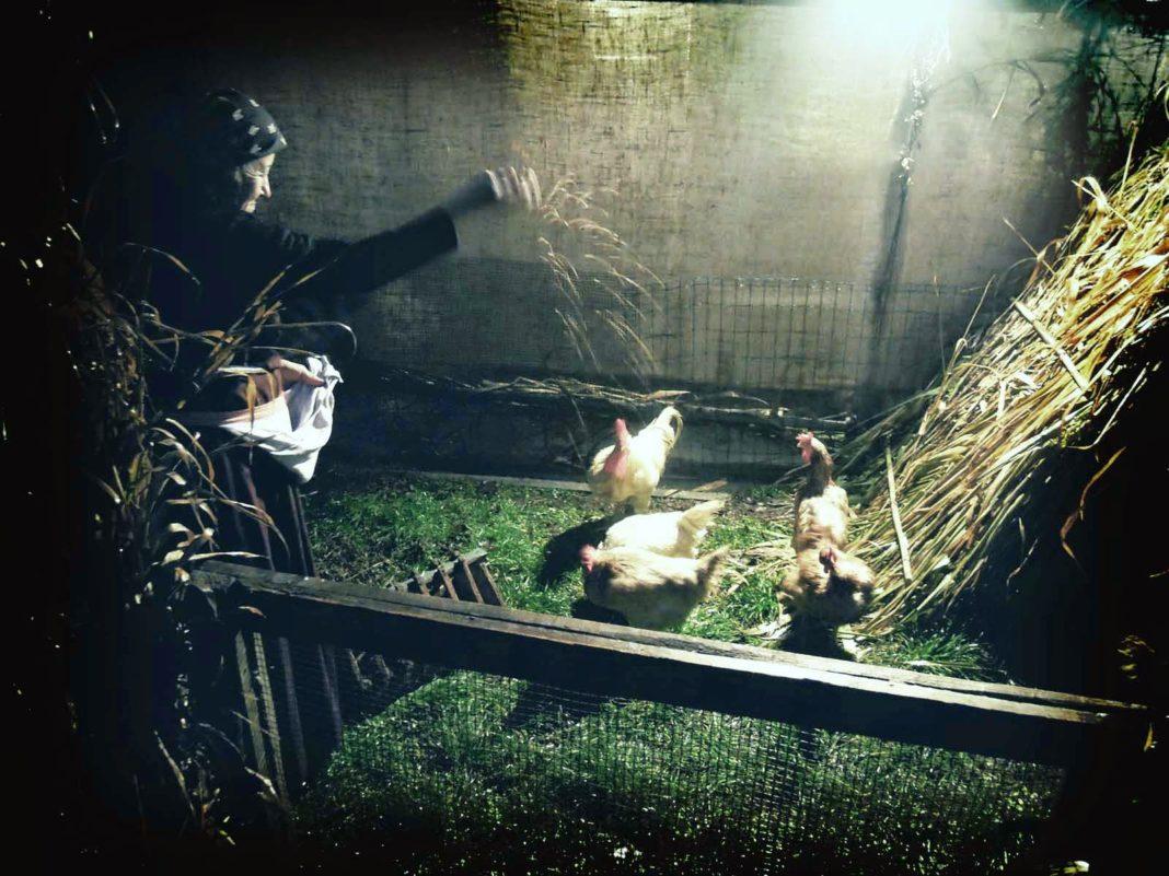 La contadina con le galline nel Presepio vivente di San Miniato Basso (PI) per il Natale 2012