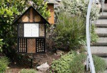 Hotel per insetti (bug hotel) per un perfetto equilibrio biologico nel pollaio | TuttoSulleGalline.it