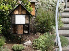 Hotel per insetti (bug hotel) per un perfetto equilibrio biologico nel pollaio   TuttoSulleGalline.it