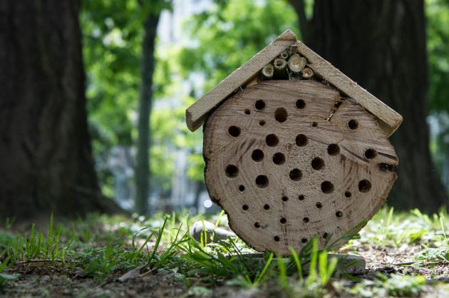 Hotel per insetti a tronco di legno singolo