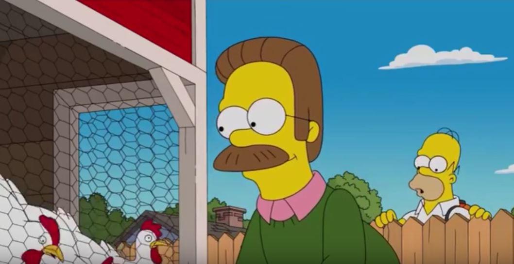 Il pollaio con le galline ovaiole livornesi di Ned Flanders