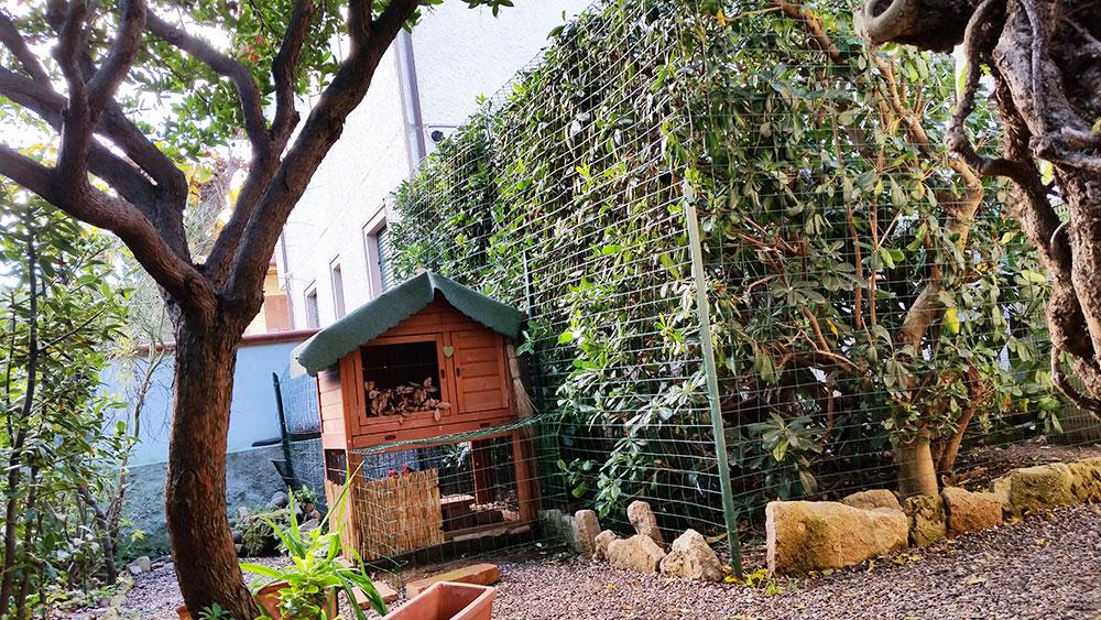 Il pollaio domestico da giardino per 2 galline ovaiole di TuttoSulleGalline.it