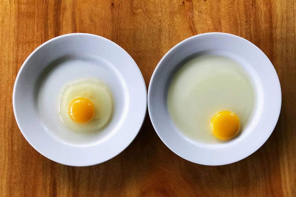Quanto durano le uova fresche