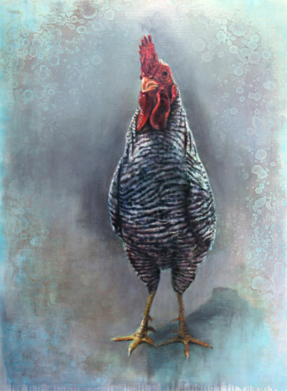 Gallina ovaiola Amrock, dipinto dell'artista Nanouk Weijnen