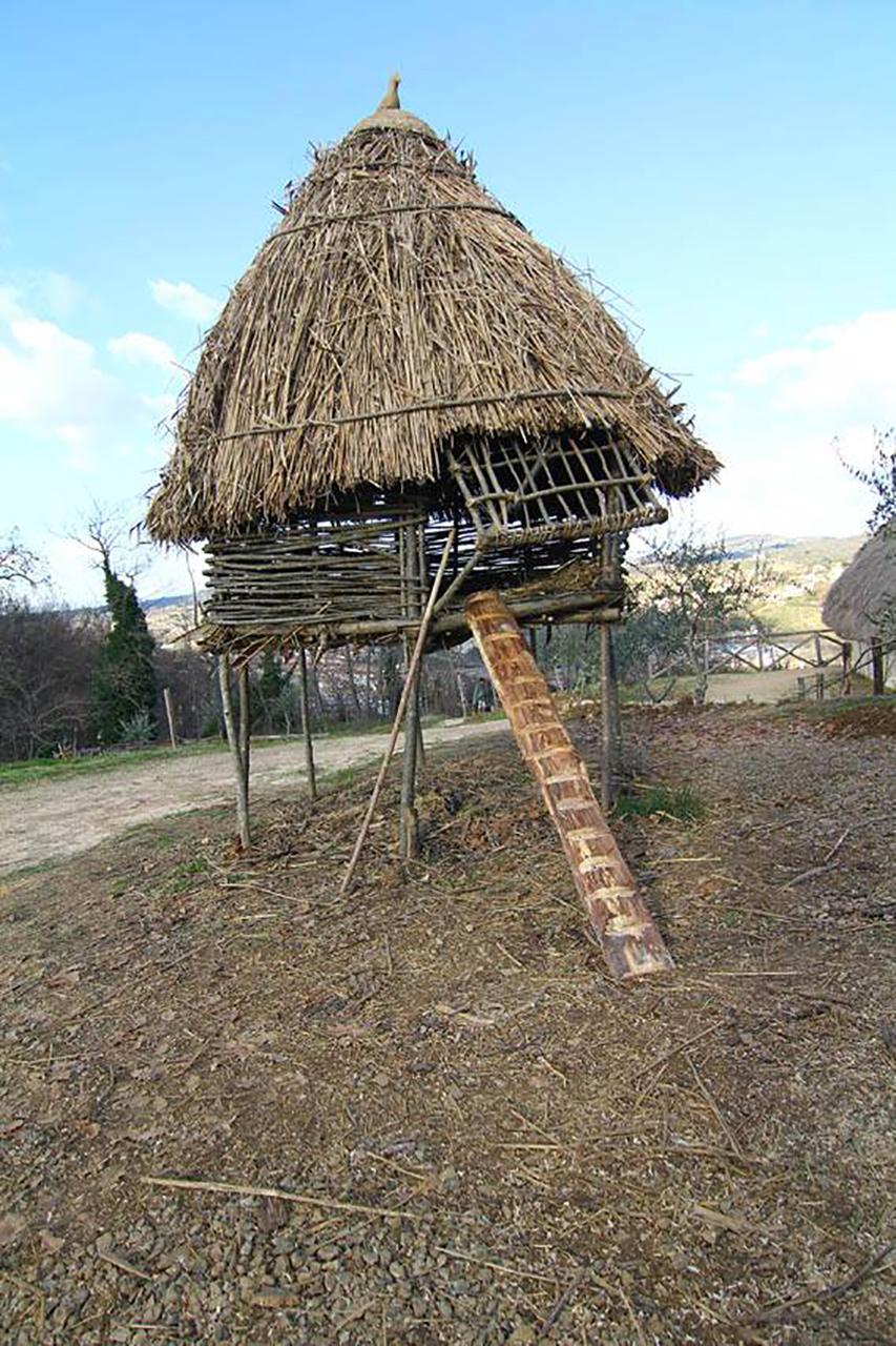 La rampa di accesso al posatoio del pollaio medievale a palafitta