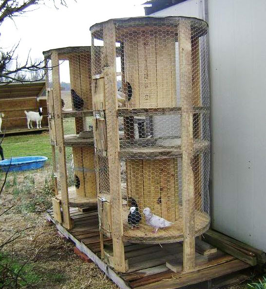 Pollaio fai da te con riciclo di bobine in legno