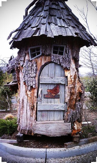 Pollaio fai da te dentro albero cavo