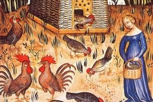 Raffigurazione di un pollaio con galline nel medioevo